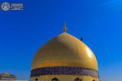 In Pictures, Washing the Dome and the Holy Tomb of the Commander of the Faithful (PBUH)